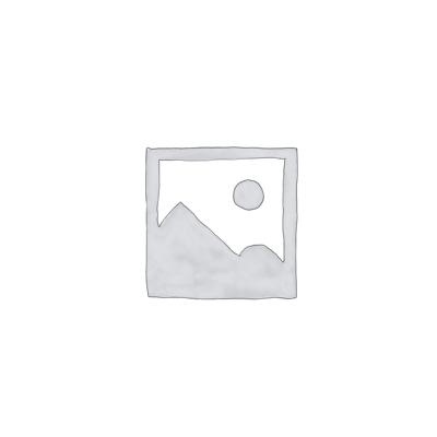 Pompe de Relevage WILO UNI V06/M11
