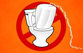image tampon article débouchage toilette